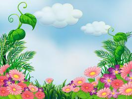 En trädgård med blommande rosa och violetta blommor