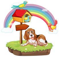 Hund und Vögel vektor