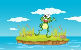 ein Frosch und ein Wasser vektor
