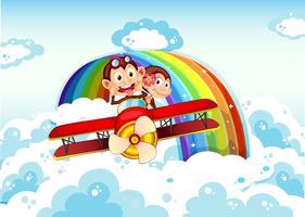 Lekfulla apor som rider på ett plan nära regnbågen vektor