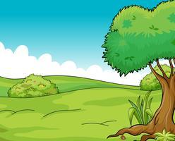 Saubere und grüne Sicht