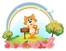 Eine Katze am Hügel, der ein leeres hölzernes Schild hält