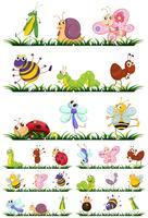 Verschiedene Arten von Insekten auf Gras vektor