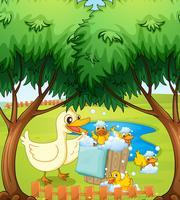 Eine lächelnde Ente und ein Entlein