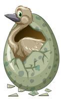Wild fågelkläckande ägg
