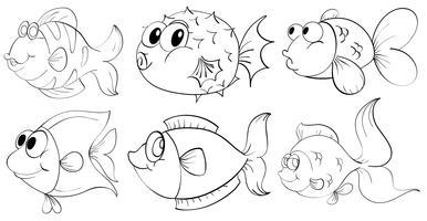 Unterschiedliches Gekritzeldesign von Fischen