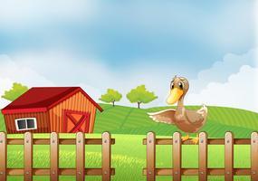Eine Ente auf dem Bauernhof vektor