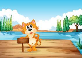 En katt i floden nära den tomma skylten