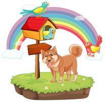 Hund und Vogelhäuschen vektor
