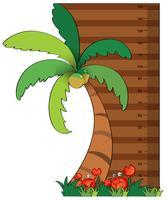 höjdmätningsdiagram med kokosnötträd