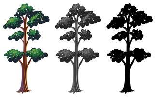 Satz des lokalisierten Baums vektor
