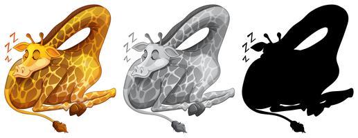 Satz des Giraffenschlafens