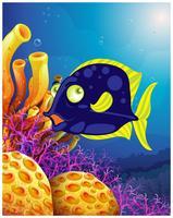 Ein Fisch in der Nähe der schönen Korallen