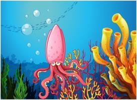 Eine Krake unter dem Meer in der Nähe der bunten Korallen