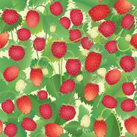 Jordgubbsmönster. Berry sömlös bakgrund. vektor