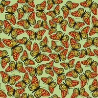 Butterfly sömlös mönster. Sommarlov djurliv bakgrund.