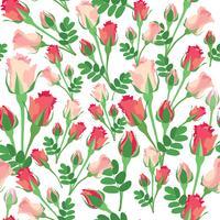 Blommigt sömlöst mönster. Blomma ros bakgrund.