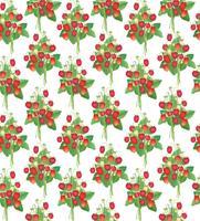 Erdbeer-Muster. Beeren nahtlose Hintergrund.
