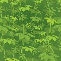 Blomönster. Leaves sömlös bakgrund. Dekorativa trädgården vektor