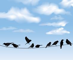 Fåglar på ledningar över blå himmel bakgrund. Vilda fåglar på tråd