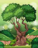 En tropisk regnskogsbakgrund vektor