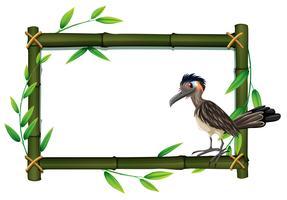 Ein Roadrunner auf Bambusrahmen vektor