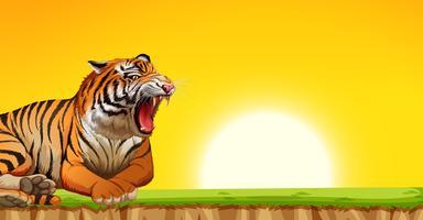 En tiger på solnedgångscenen vektor
