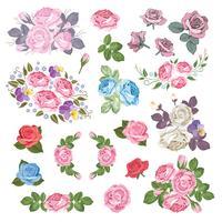 Mega uppsättning av olika rosor med löv isolerad på vit bakgrund. Vektor illustration
