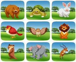 Sats av djur i naturen scen vektor