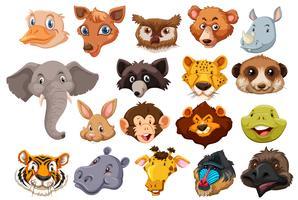 Set av vild djurhuvud