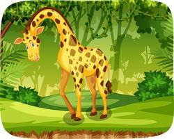 En giraff i djungeln vektor