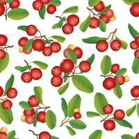 Tranbär sommar sömlösa mönster. Berry bakgrund. Blom- prydnad