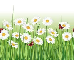 Blommigt sömlöst landskap. Blomma bakgrund. Blomstra trädgårdsgränsen vektor