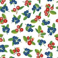 Tranbär sömlösa mönster Berry blommig bakgrund. Sommarmat
