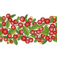 Moosbeernahtloser Muster Beerenblumenhintergrund. Sommeressen vektor