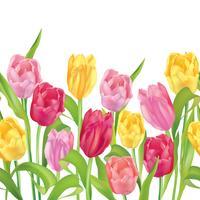 Blommigt sömlöst mönster. Blomma bakgrund. Blomstra trädgårdsgränsen vektor