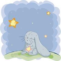 söt liten kanin
