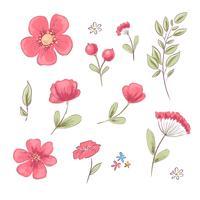 Satz rote Mohnblumen und Gänseblümchen. Handzeichnung. Vektor-illustration vektor