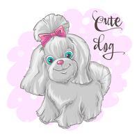 Illustration av en söt liten hund. Skriv ut för kläder eller barnrum