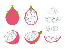Set av drakefrukt isolerad på vit bakgrund - Vektor illustration