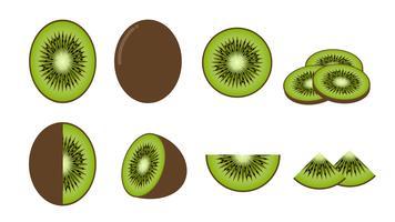 Sats med färsk kiwi frukt isolerad på vit bakgrund - Vektor illustration