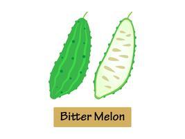Vektor illustration Bitter melon isolerad på vit bakgrund.