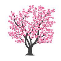 Körsbärsblomsträd i vektor illustration