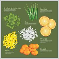 Vektor-Illustration Zutat Lebensmittel vektor