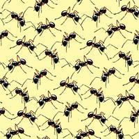 Makro realistiska myror sömlös bakgrund. vektor