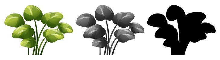 Set von Pflanzenentwürfen