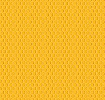 Vektor des nahtlosen Musterhintergrundes der Bienenwabe