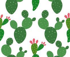 Seamless kaktus mönster bakgrund - Vektor illustration