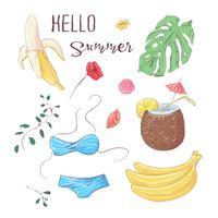 Reihe von tropischen Früchten. Vektor-Illustration Handzeichnung