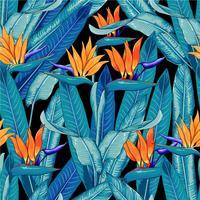 Sömlös mönster tropisk vacker med orange färgblommor på isolerad svart bakgrund. Vektorns illustrationritning. vektor